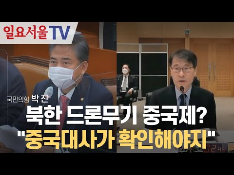 [영상] 북한 드론무기 중국제? 박진