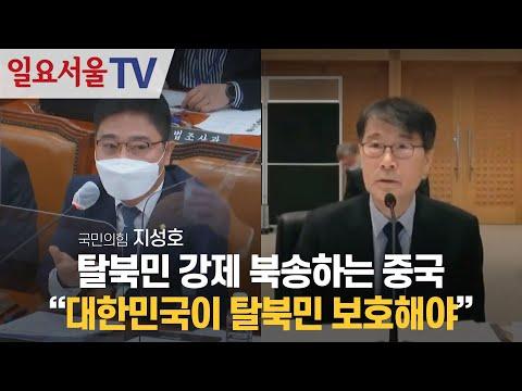 [영상] 탈북민 강제 북송하는 중국, 지성호