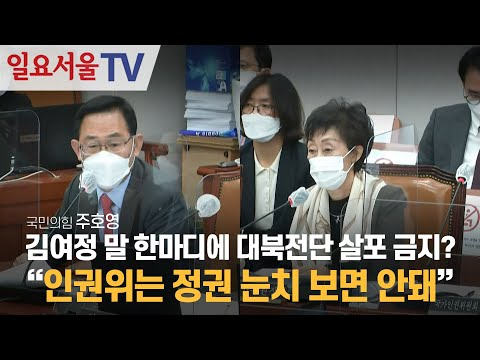 [영상] 김여정 말 한마디에 대북전단 살포 금지법? 주호영
