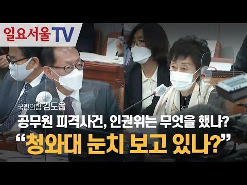 [영상] 공무원 피격사건, 인권위는 무엇을 했나? 김도읍