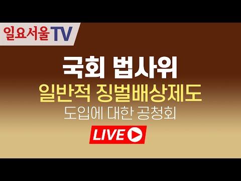 [LIVE] 1127 국회 법사위 - 일반적 징벌배상제도 도입에 대한 공청회