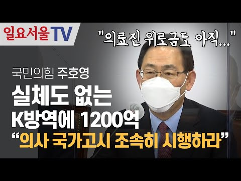 [영상] 실체도 없는 K방역에 1200억... 주호영