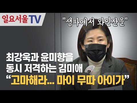 [영상] 최강욱과 윤미향을 동시 저격하는 국민의힘 김미애