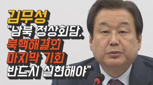 [영상] 김무성