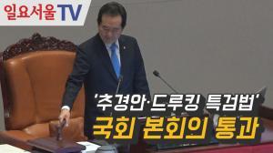 [영상] '추경안·드루킹 특검법' 국회 본회의 통과