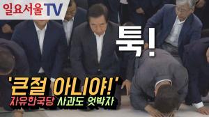 [영상] '큰절 아니야!' 자유한국당 사과도 엇박자